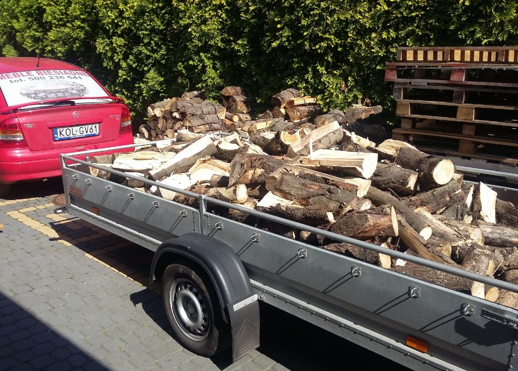 Drewno opałowe – kominkowe